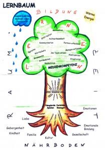 Grafik Lernbaum  Pädagogik